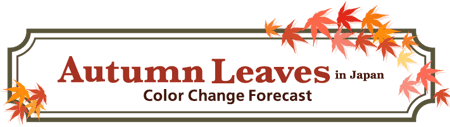 Autumn Foliage Forecast